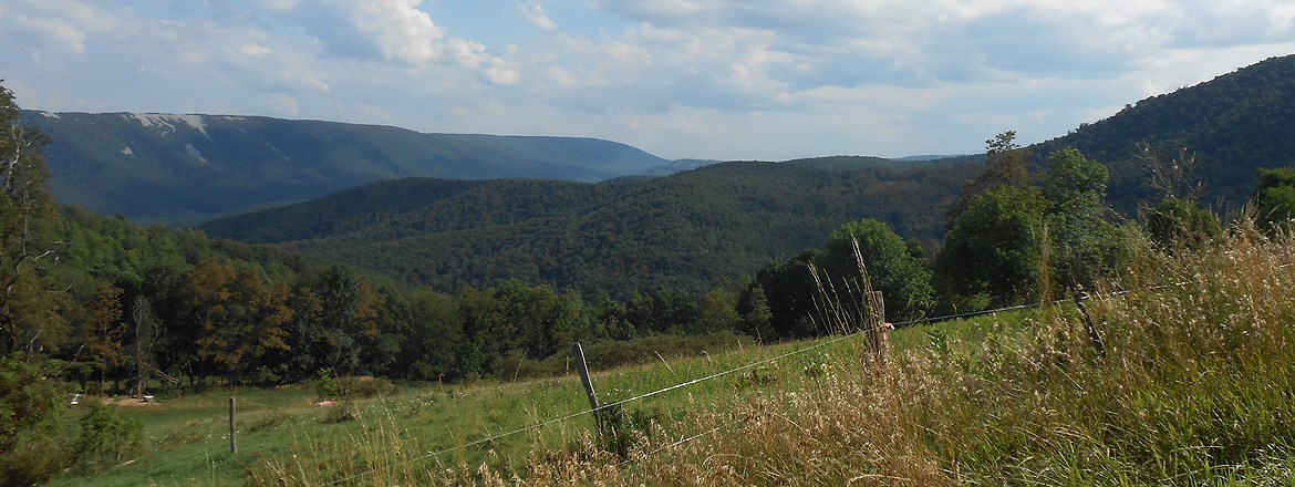 Cumberland Maryland Real Estate - Homes, Farms, Land
